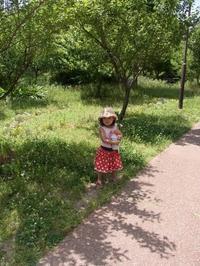 次女、4歳になりました。 - 子どものいる暮らし。