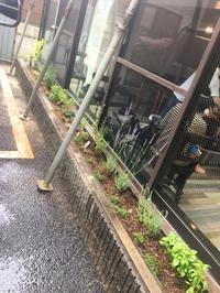 みんなで綴cafeのハーブ花壇作り - 農場長のぼやき日記