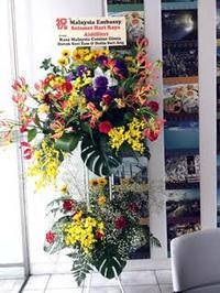 ラマダンが明けて、マレーシア大使館に正月御祝の花をお届け。 - 代々木上原花屋日記  にしむらフローリスト
