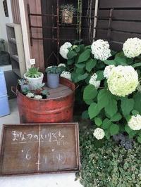 「まなつのいりくち」at GENUINE - petite maman ふたり日記