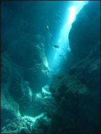 6月28日万座・ジンベエ・青の洞窟色々コース!! - 沖縄・恩納村のダイビング・青の洞窟体験ダイビング・スノーケルご紹介