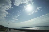 沖縄の旅15(5cut) 車窓 -     ~風に乗って~    Present