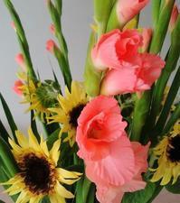 夏の花 - La Pousse(ラプス) フラワーアレンジメント教室