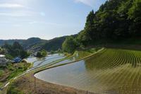 初夏を探しに・・ - katsuのヘタッピ風景