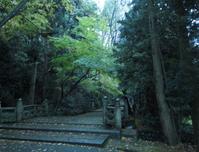 白山ヒメ神社の参道 - 渡る風のまにまに