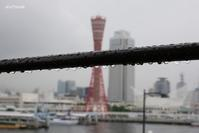 雨の日のポートタワー - aco* mode