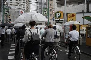 梅雨 - saruyamaの沼探検