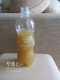 新生姜とフォーガーと黄ばみ取り - yamatoのひとりごと