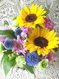 今日のお花 - 花とaromaとうさぎとかのん
