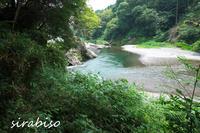清流にて - 小さな森の写真館 (a small forest story)