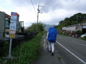 First Pilgrimage for Siberian Husky Hana II, May 4th 2006 (3) - 犬連れへんろ*二人と一匹のはなし*