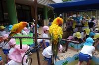 移動動物園 ~Zoo beim Kindergarten~ - チーム名はファミリエ・ベア ~ハイジが記すクマ達との日々~