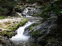 夏におすすめ!天城で一番涼しい滑沢渓谷 - 白壁荘だより  天城百話