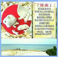 オカリナのある風景🎵「珊瑚笛」…母なる海の囁(ささや)き - グリーンノート マクロビカフェ&土の音(オカリナ工房)