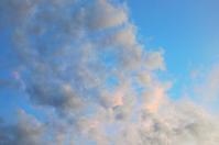 束の間の晴れ空とボッティチェリ - まほろば日記