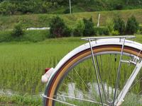 河内長野 - おもいでは自転車とともに