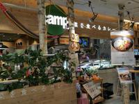 ★野菜を食べるカレーcamp★ - Maison de HAKATA 。.:*・゜☆