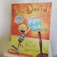 """あじさいお勧めの絵本 """"No, David!"""" - おやこ英語絵本の会 「あじさい」"""