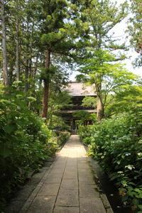 川場村 吉祥寺(1) 庭園 (撮影日:2017/6/29) - toshiさんの気まぐれフォトブログ