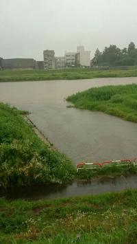 20170701 【自然】大雨・洪水警報 - 杉本敏宏のつれづれなるままに