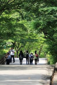 6月の植物園 - miyabine's フォト日記2~身の周りのきれい・可愛い・面白い~