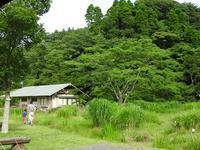 ボコボコしています。/細かなところまで見ています。 - 千葉県いすみ環境と文化のさとセンター