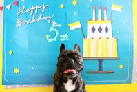 Happy Birthday!! - 平日、会社を休んだら