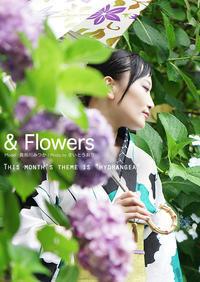 &Flowers:雨だし紫陽花だし浴衣だし。となると婀娜っぽいのが撮りたいのよ - 東京女子フォトレッスンサロン『ラ・フォト自由が丘』とさいとうおり