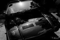 モノクロ スナップ... - ◆Akira's Candid Photography