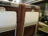 大阪のおばちゃん仕様の特急に乗って 佐世保なう - B級出張日記
