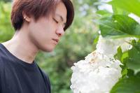 Garden【11】 - 写真の記憶
