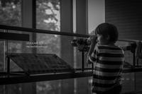茨城県立自然博物館 - オデカケビヨリ