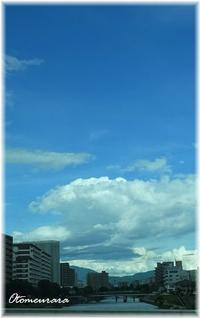 夏空・・・ 暑い~ & 冷や汗 - 日々楽しく ♪mon bonheur