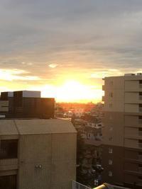 夕日が美しかったこと  &  入谷の鬼子母神  朝顔市のこと - ゆかぷー の 脚下照顧