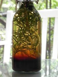 ハーブ手仕事 1day レッスン「ベリー酒」&「ハーブ酒」 - 心とカラダが元気になるアロマ&ハーブガーデン教室chant rose