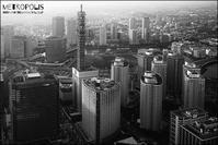 metropolis - すずちゃんのカメラ!かめら!camera!