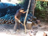 木揃え - 日向の国の備長炭 奥井製炭所