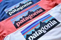 PatagoniaのTシャツ。 - DAKOTAのオーナー日記「ノリログ」