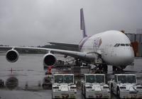 タイ国際航空(TG641/TG640)で日タイ修好130年記念バンコクFAMトリップに行ってきた - ! Buen viaje!(ブエン ビアーへ)旅と猫