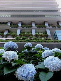 東京そぞろ歩き:警察博物館 - 日本庭園的生活