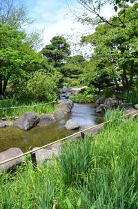 行船公園の緑 - kenのデジカメライフ