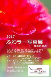 写真展のお知らせ「ふわラー写真展2017」 - ainosatoブログ02