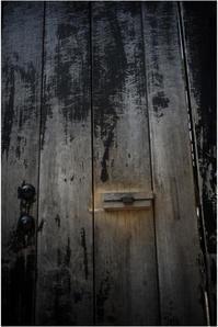 1826 名玉極楽(2017年6月1日ズマロン35㎜F2.4で奈良公園散策)4-完- - レンズ千夜一夜