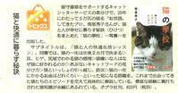 産経新聞、東京スポーツに掲載されました - 猫の目かわら版