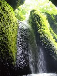 神秘の絶景【シワガラの滝】へ冒険にでかけよう - ルーシュの花仕事
