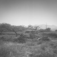 静かな草ヒロのある風景 - Film&Gasoline