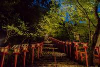 貴船神社~七夕笹飾りライトアップ - 鏡花水月