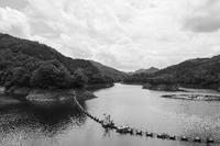 ダム湖の畔 - 気ままにお散歩