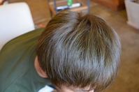 ヘナが髪にいい理由・・・の巻 - 館林の完全お一人様専用 くつろぎの美容室 ぱ~せぷしょんの ウェブログ