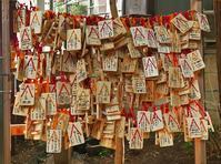 気象神社・・高円寺・氷川神社 - あの町 この道